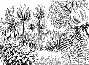 jardin d'eden-Guillaume Laigle